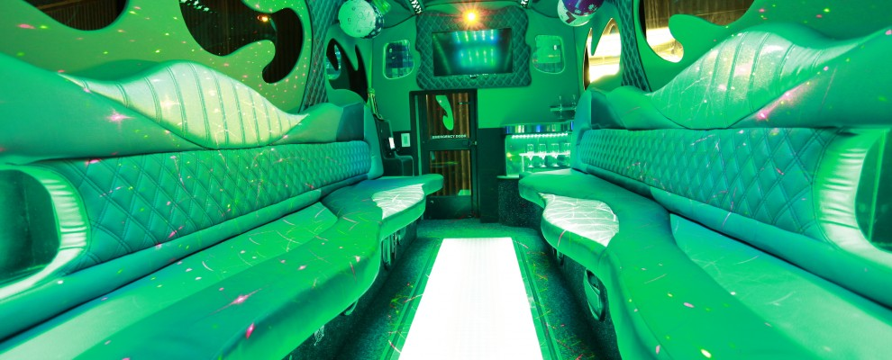 16 Seat Party Bus Hire